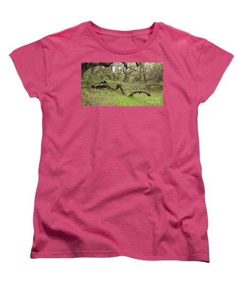 Park Serpent Women's T-Shirt (Standard Cut)
