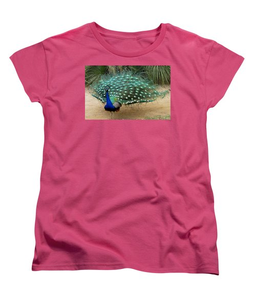 Peacock Showing All Feathers Women's T-Shirt (Standard Cut) by Patricia Barmatz
