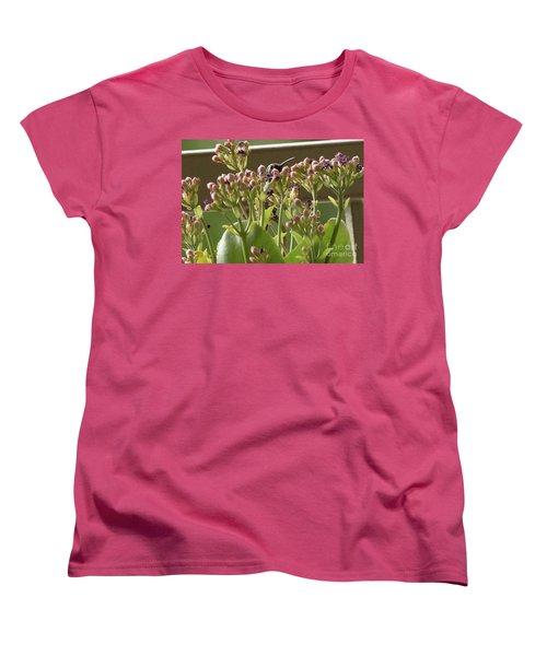 Peek A Boo Women's T-Shirt (Standard Cut) by Anne Rodkin