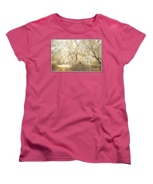 Pennsylvania Autumn Woods Women's T-Shirt (Standard Cut) by A Gurmankin