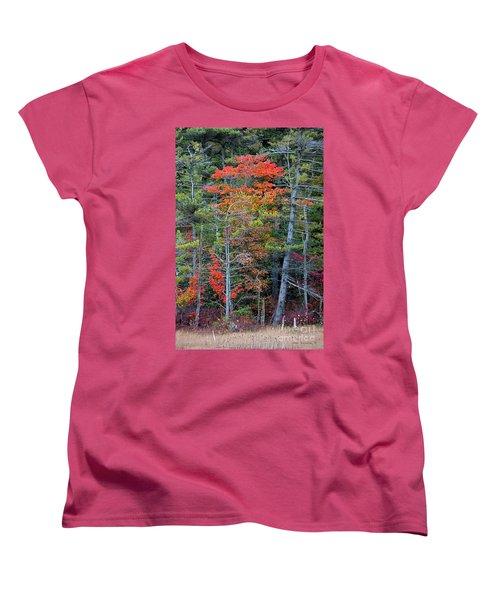 Pennsylvania Laurel Highlands Autumn Women's T-Shirt (Standard Cut) by John Stephens