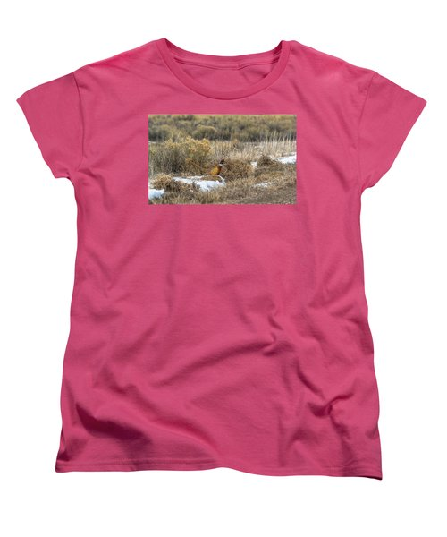 Pheasant Glory Women's T-Shirt (Standard Cut) by Yeates Photography