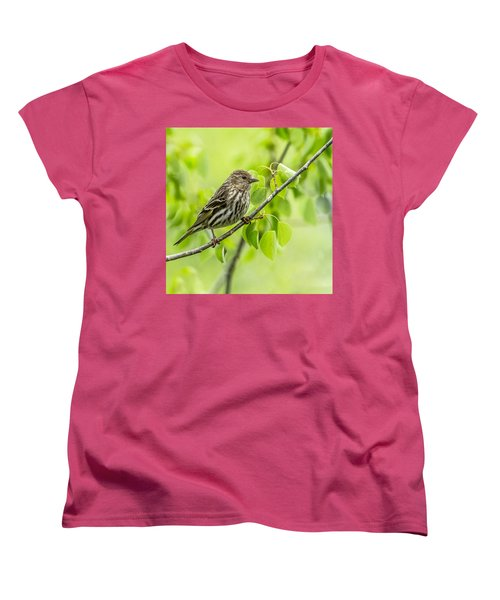 Pine Siskin On A Branch Women's T-Shirt (Standard Cut) by Yeates Photography