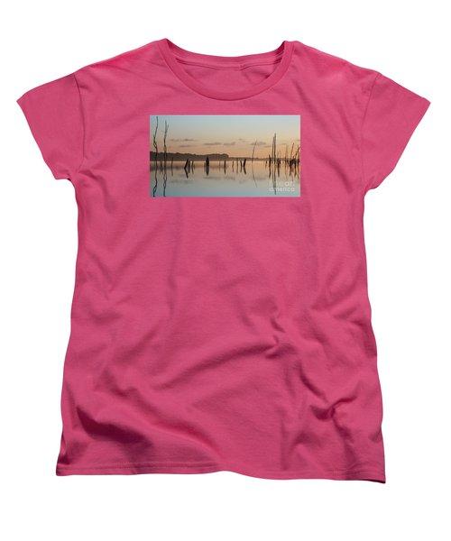 Pink And Blue Skies Women's T-Shirt (Standard Cut) by Debra Fedchin