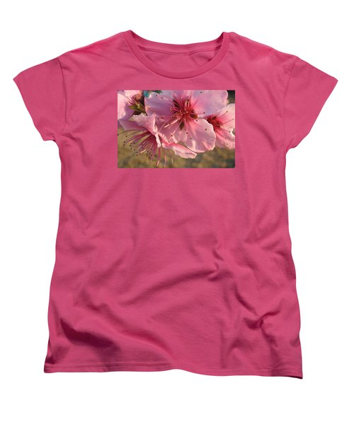 Pink Blossoms Women's T-Shirt (Standard Cut) by Barbara Yearty