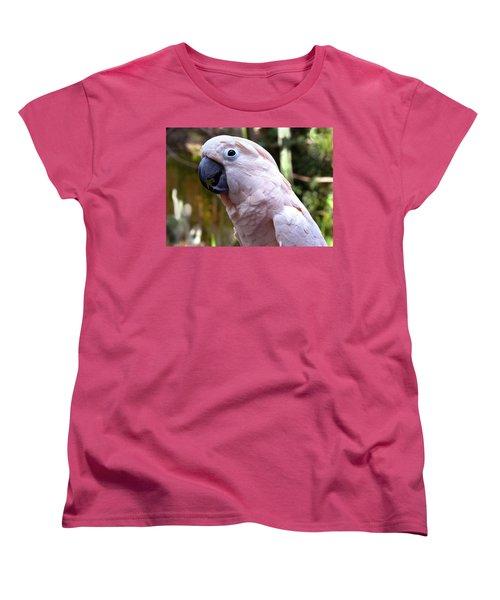 Pink Cockatoo Women's T-Shirt (Standard Cut) by Haleh Mahbod