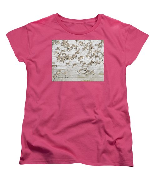 Piping In Spring Women's T-Shirt (Standard Cut) by I'ina Van Lawick