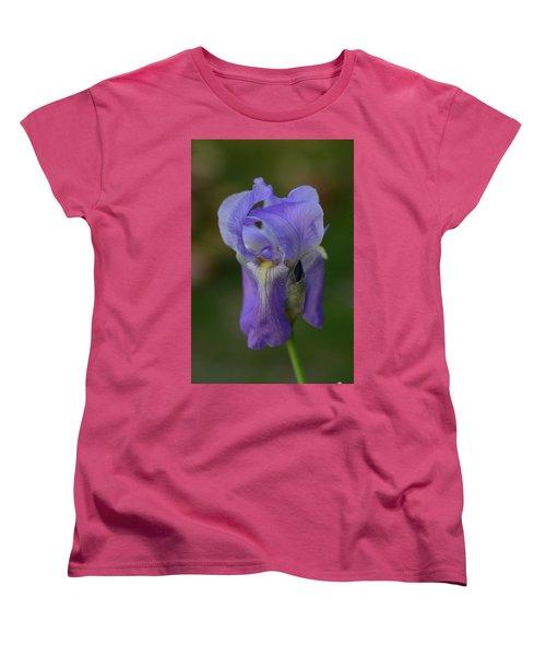 Pretty In Purple Women's T-Shirt (Standard Cut)