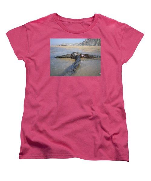 Propeller Steamship Belem Shipwreck Women's T-Shirt (Standard Cut) by Richard Brookes