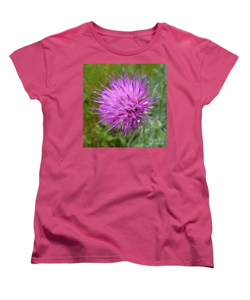 Purple Dandelions 2 Women's T-Shirt (Standard Cut) by Jean Bernard Roussilhe