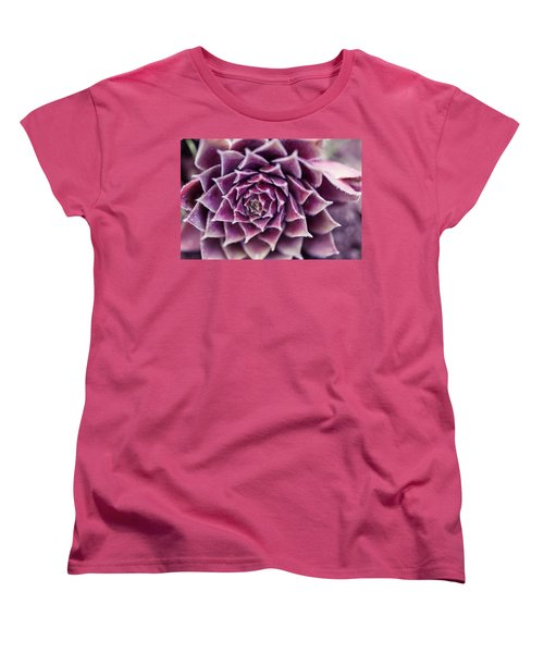 Purple Succulent Plant Blossom In Summer Women's T-Shirt (Standard Cut) by Jingjits Photography