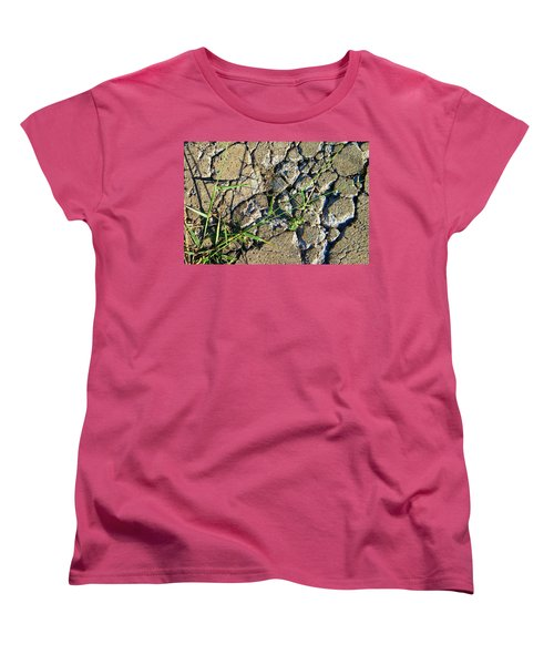 Pushing Through Concrete Women's T-Shirt (Standard Cut) by Lenore Senior