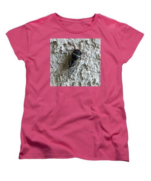 Putnam's Cicada Women's T-Shirt (Standard Cut) by Anne Rodkin