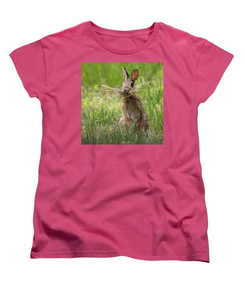 Rabbit Collector Square Women's T-Shirt (Standard Cut) by Terry DeLuco