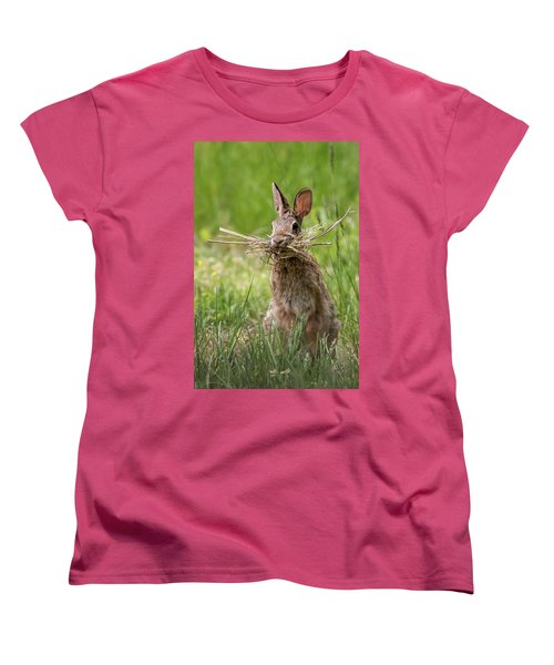 Rabbit Collector  Women's T-Shirt (Standard Cut) by Terry DeLuco