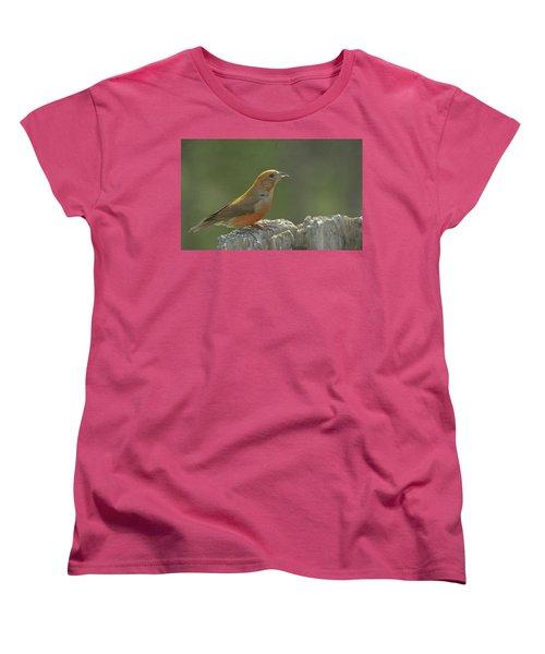 Red Crossbill Women's T-Shirt (Standard Cut) by Constance Puttkemery