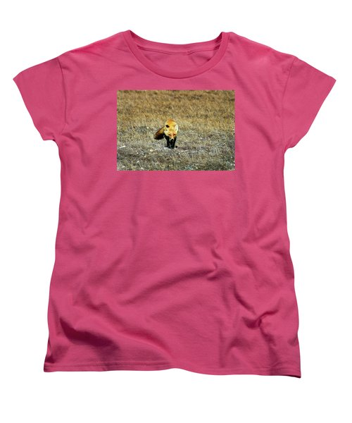 Women's T-Shirt (Standard Cut) featuring the photograph Red Fox On The Tundra by Anthony Jones