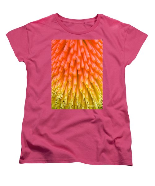 Red Hot Poker Flower Close Up Women's T-Shirt (Standard Cut) by Colin Rayner
