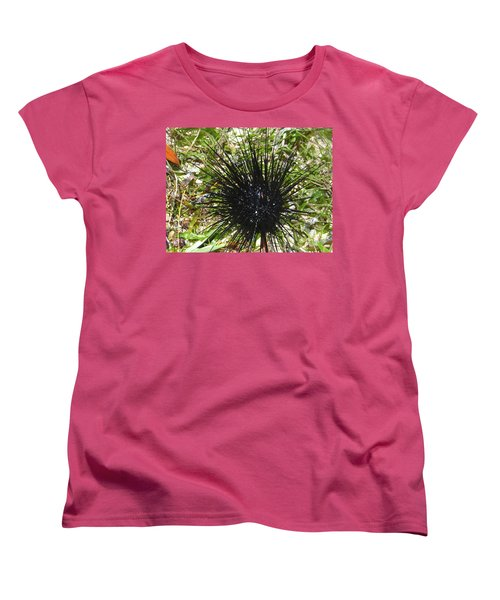 Reef Life - Sea Urchin 1 Women's T-Shirt (Standard Fit)