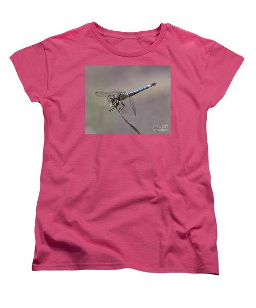Resting My Wings Women's T-Shirt (Standard Cut) by Liz Masoner