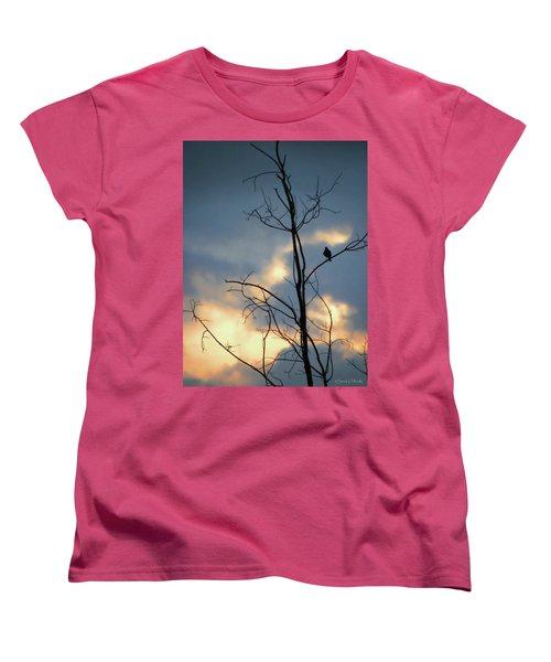 Women's T-Shirt (Standard Cut) featuring the photograph Robin Watching Sunset After The Storm by Sandi OReilly