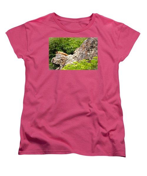 Rock Chuck Women's T-Shirt (Standard Cut) by Lana Trussell