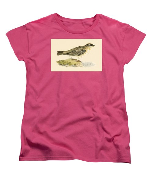 Rock Sparrow Women's T-Shirt (Standard Cut) by English School