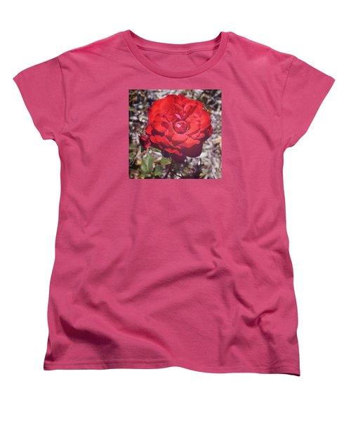 Women's T-Shirt (Standard Cut) featuring the photograph Roses Are Red by Cassandra Buckley