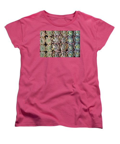 Rows Of Succulents  Women's T-Shirt (Standard Cut) by Catherine Lau