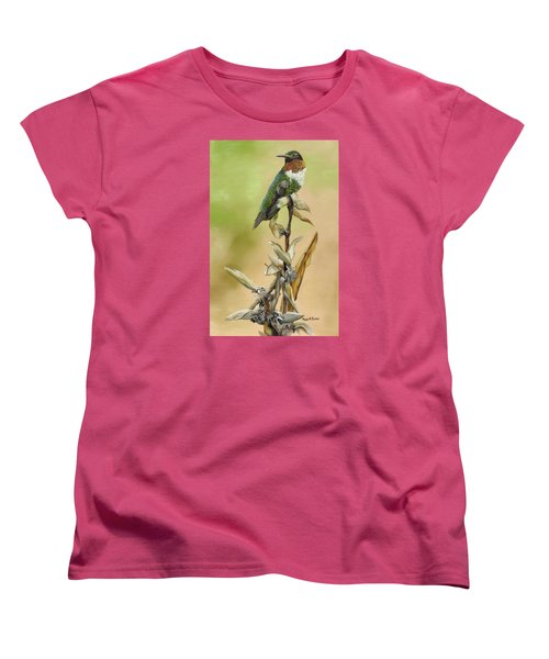 Women's T-Shirt (Standard Cut) featuring the painting Ruby Throated Hummingbird Study by Phyllis Beiser