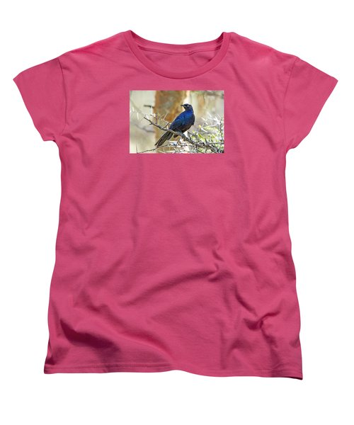 Women's T-Shirt (Standard Cut) featuring the photograph Ruppels Glossy Starling by Pravine Chester