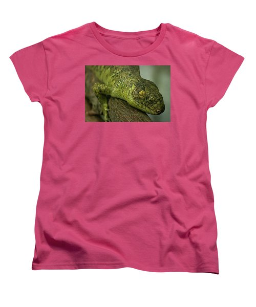 Scales Of The Hunter Women's T-Shirt (Standard Cut)