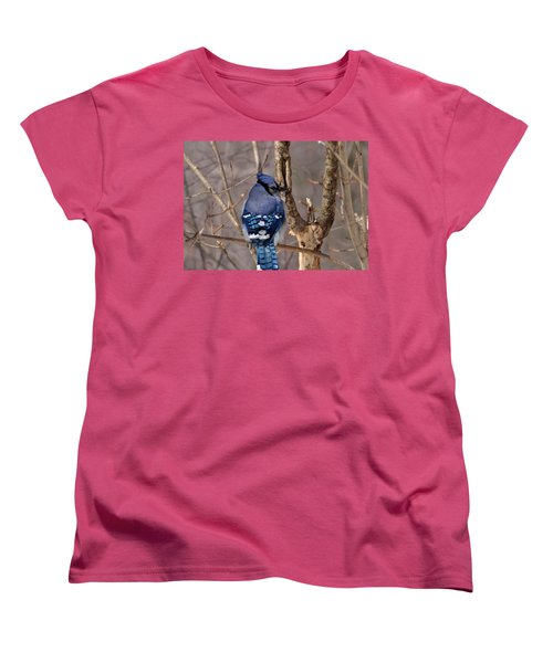 Shy Blue Jay  Women's T-Shirt (Standard Cut) by David Porteus