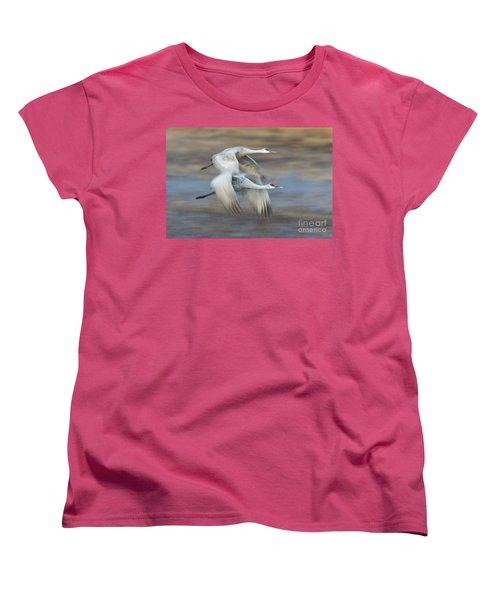 Side By Side Women's T-Shirt (Standard Cut) by Bryan Keil