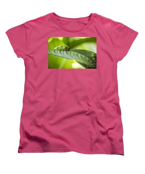 Sleeeepy Women's T-Shirt (Standard Cut)