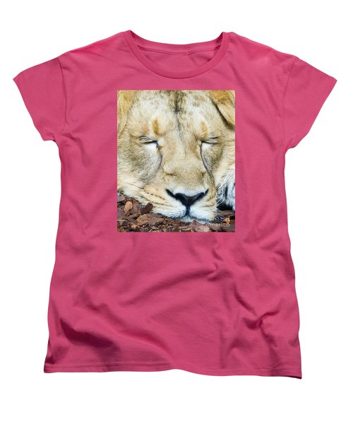 Women's T-Shirt (Standard Cut) featuring the photograph Sleeping Lion by Colin Rayner