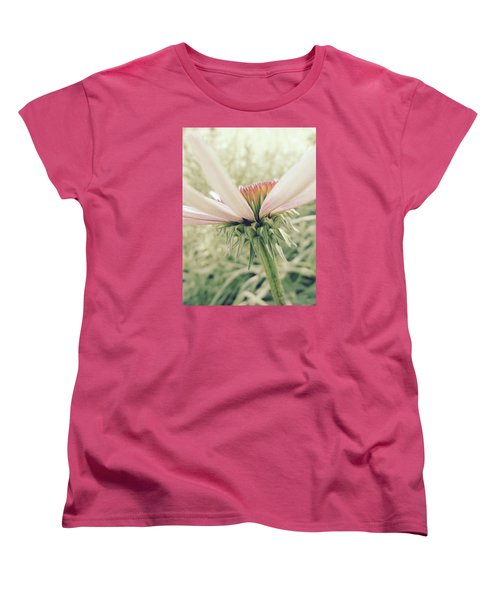 Soft Colors Women's T-Shirt (Standard Cut) by Tim Good