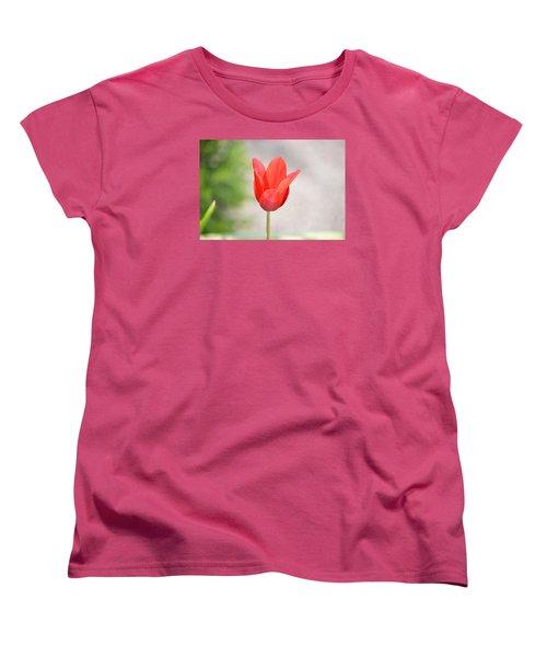 Solo Tulip Women's T-Shirt (Standard Cut) by William Bartholomew