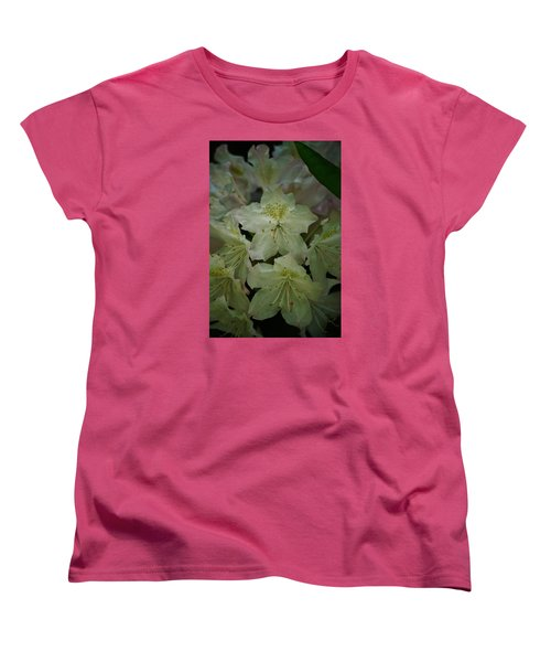 Women's T-Shirt (Standard Cut) featuring the photograph Speckled In Gold by Ramona Whiteaker