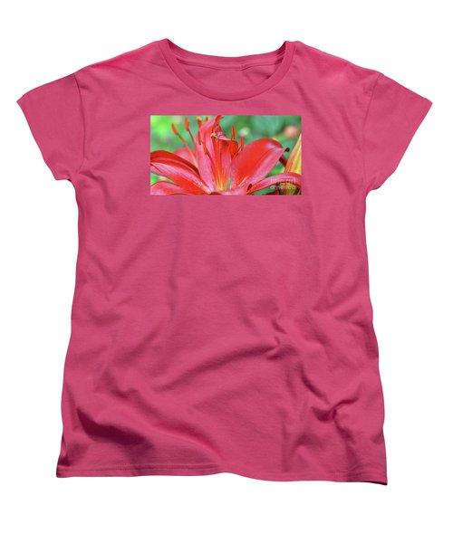 Spinning For Dinner Women's T-Shirt (Standard Cut) by Debby Pueschel