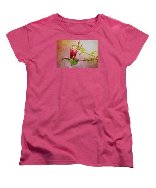 Spring Flare Women's T-Shirt (Standard Fit)