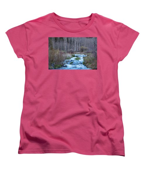 Spring Melt Off Flowing Down From Bonanza Women's T-Shirt (Standard Cut) by James BO Insogna