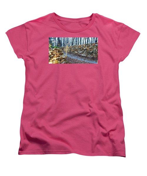 Stone Wall Ga Mountain 1 Women's T-Shirt (Standard Cut) by Angela Murray