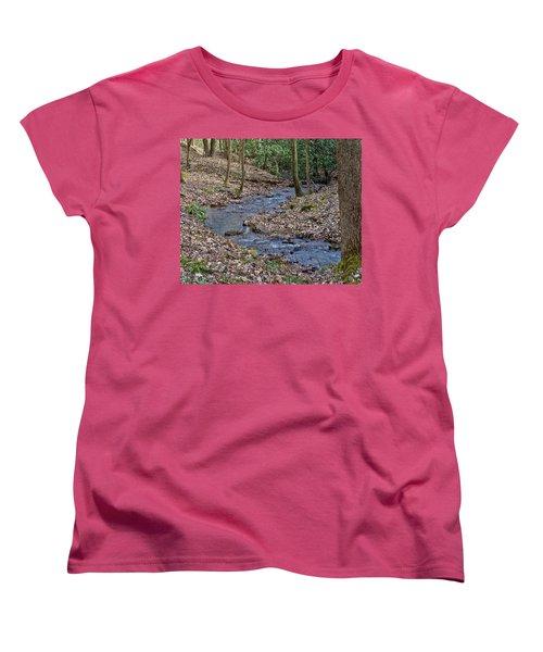 Stream Up The Hollow Women's T-Shirt (Standard Cut)
