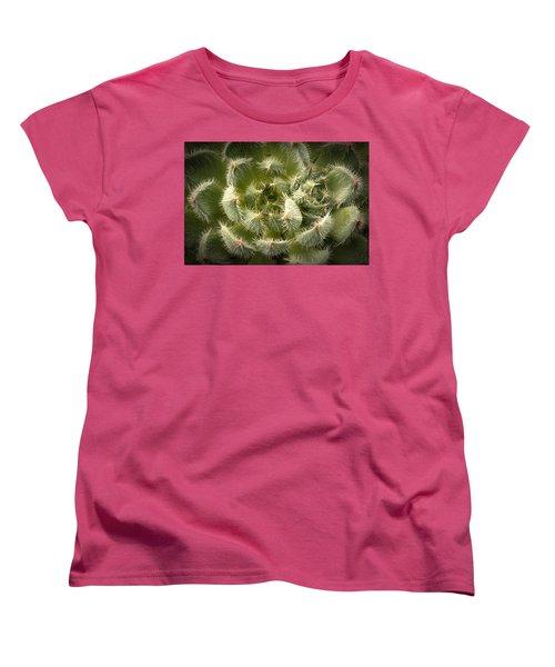 Succulent Pride  Women's T-Shirt (Standard Cut) by Catherine Lau