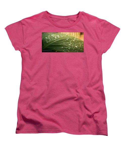 Sun Shower Women's T-Shirt (Standard Cut)