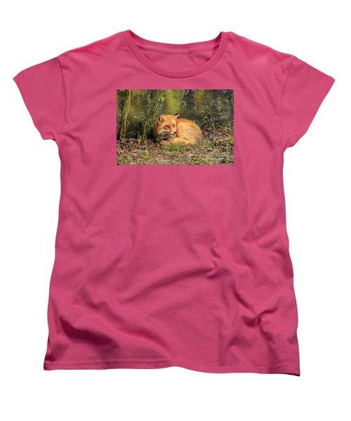 Sunning Fox Women's T-Shirt (Standard Cut) by Debbie Green