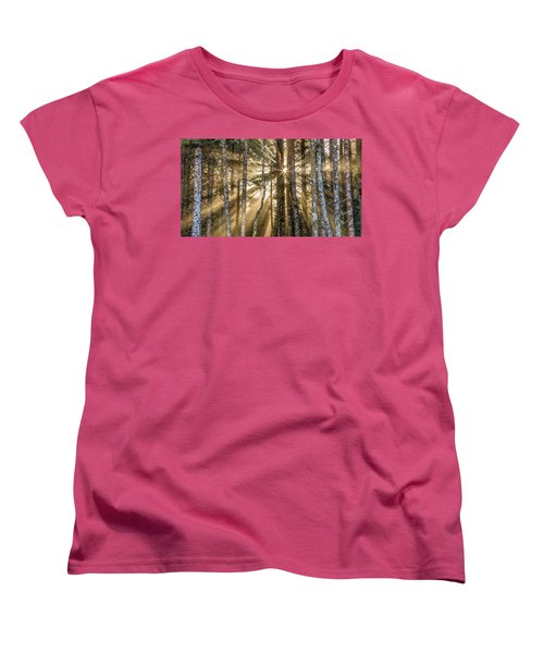 Women's T-Shirt (Standard Cut) featuring the photograph Sunshine Forest by Pierre Leclerc Photography