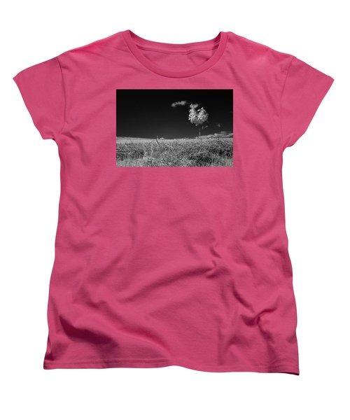 Sycamore Women's T-Shirt (Standard Cut) by Keith Elliott