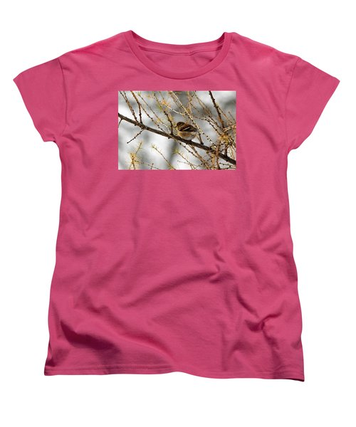 Tamarack Visitor Women's T-Shirt (Standard Cut) by Debbie Oppermann